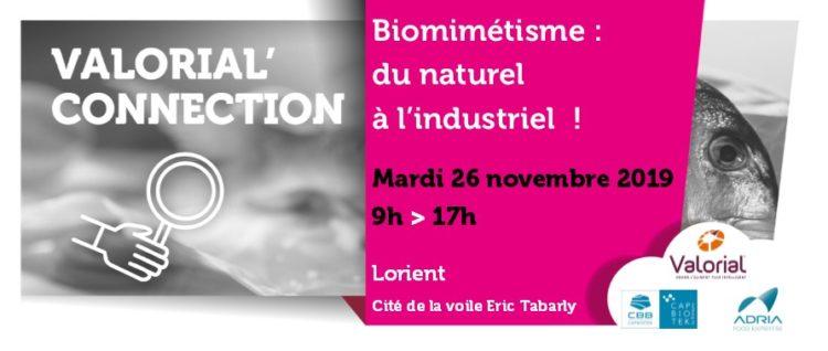 Bandeau VC Biomimetisme 26 11 2019-V2