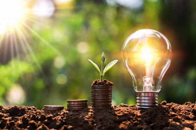 light-bulb-soil-with-young-plant-growing-money-stack-saving-finance-energy-concept_34152-1357